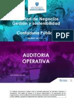hallazgos auditoria operativa