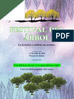 Festival Del Árbol