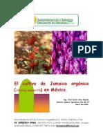 El cultivo de Jamaica orgánica