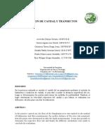 CAUDAL Informe