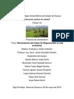 Proyecto de Reforestacion Respaldo