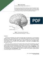 Laboratory 01 - Brain Anatomy.pdf