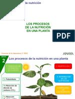 Nutricion en Plantas...