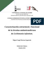 Tesis_Miguel_Angel_Moreno_UAM_pdf.pdf
