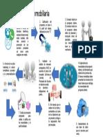 Proceso de Venta Inmobiliaria1.pptx