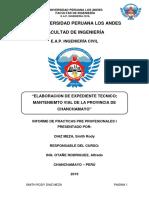 INFORME DE PRACTICAS PRE PROFESIONAL I - copia.docx
