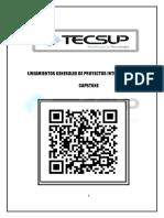 Lineamientos de Proyecto Integrador, Capstone - Trujillo 2019 II (6) (1)