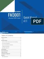 FM3001 Quick Manual v1.1