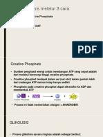 3 Cara Sintesis ATP