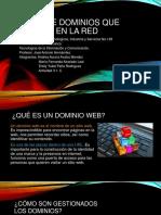 Tipos de dominios de la red.pptx