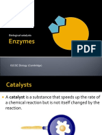 Enzymes Video