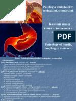 6. Patologia Amigdalelor, Esofagului, Stomacului