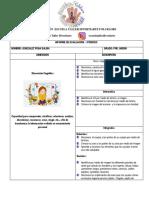 Informe Evaluacion II Pre- Jardin
