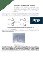 Deux Molécules Importantes Kératine Et Mélamine