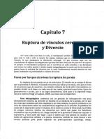 CAP 7 - Ruptura de Vinculos Cercanos y Divorcio