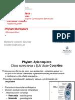 T5 Coccideos  y Microsporidium.pdf