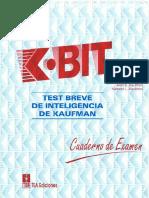 K-Bit láminas
