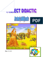 avap proiect didactic