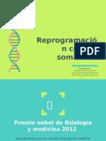 Reprogramación celular exposición