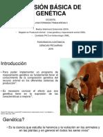 Revision Basica Genetica
