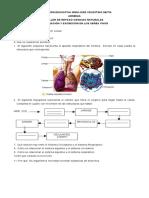 Tallerrespiracin Excrecin 120524121059 Phpapp01