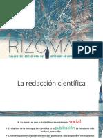 Articulo Rizomas