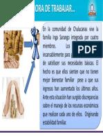 PROBLEMATIZACION 1.pdf