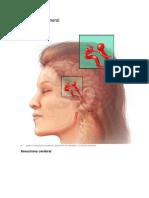 aneurisma y causas.docx