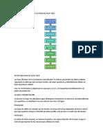 Proceso de Extracion de La Pulpa de Aloe Vera