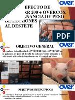 EFECTO DE VACUNA EN CERDOS