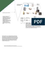 Práctica de Físico Químico (1)