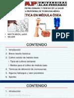Citogenética.ppt