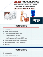 Citogenética en MO