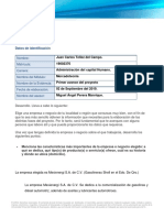 Tellez_ Juan Carlos_Mercado Meta - Primer Avance Del Proyecto