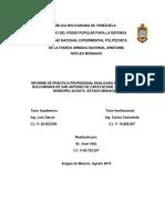 Informe Jose Veliz 1 Definitivo