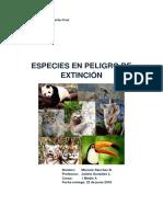 especies peligro extinsion