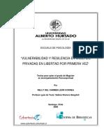 MAPLeon.pdf