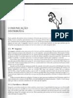 Cap15 - Comunicação Distribuída
