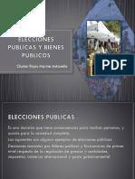 ELECCIONES PÚBLICAS Y BIENES PÚBLICOS.pptx