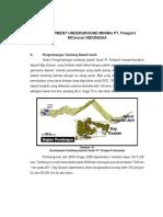 developmen freeport