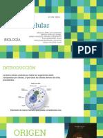 Teoría Celular (Universidad Iberoamericana de Puebla) - Juan Domingo