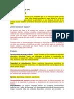 Modelo de Negocio Sps Parque Rodante
