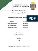 Informe Para La Exposicion de Estomatologia I