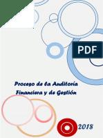 Proceso de Auditoria Financiera y de Gestion Informe