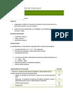 362811519-03-Control-Fundamentos-de-calculo-iacc.pdf