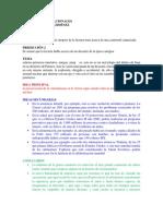 ENTREGA PREVIA 1 ESCENARIO 3 (2).docx