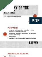 Anatomy of the Larynx