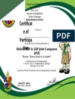 Certificate of Participation Bsp - Copy