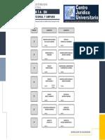 Plan de Estudios MDCA