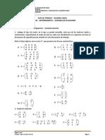 GUIA_N4_MATRICES_334019 (1)